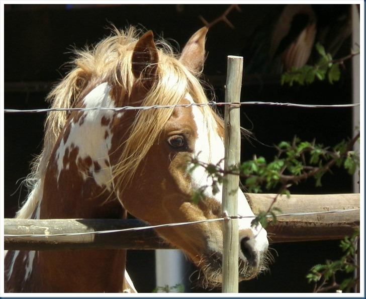Len 1-10-2012 063
