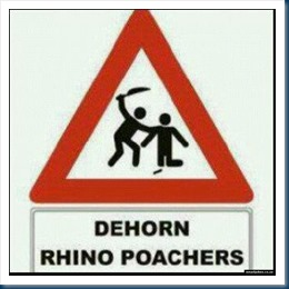 470251-dehorn-rhino-poachers_66464_47025_1