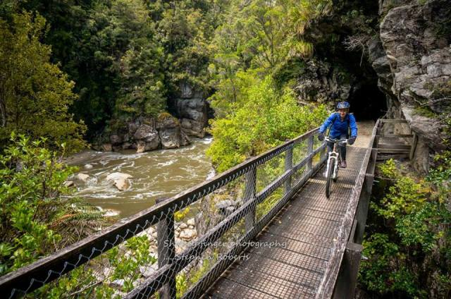 charming creek walkway and tunel
